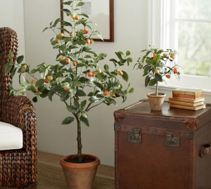 faux-potted-kumquat-tree-c
