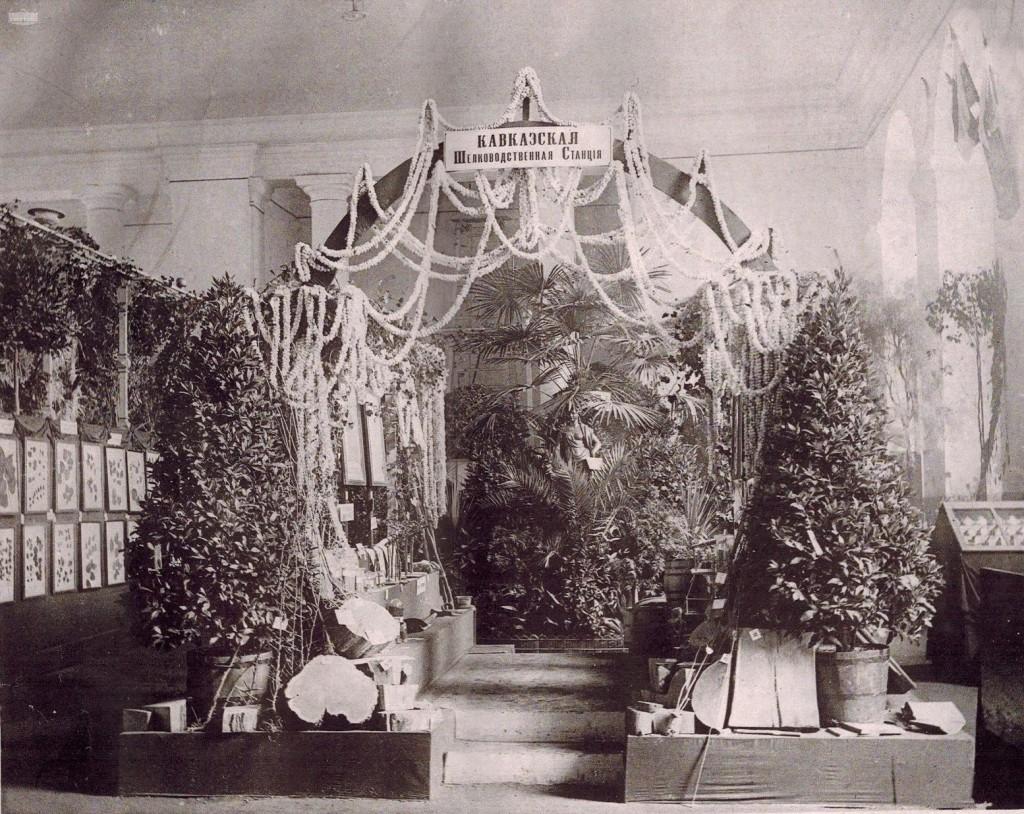 ფოტო: რ. ი. ტილეს,  სრულიად რუსეთის მებაღეობის გამოფენაზე კავკასიის მეაბრეშუმეობის სადგურის ექსპოზიცია, 1890წ.