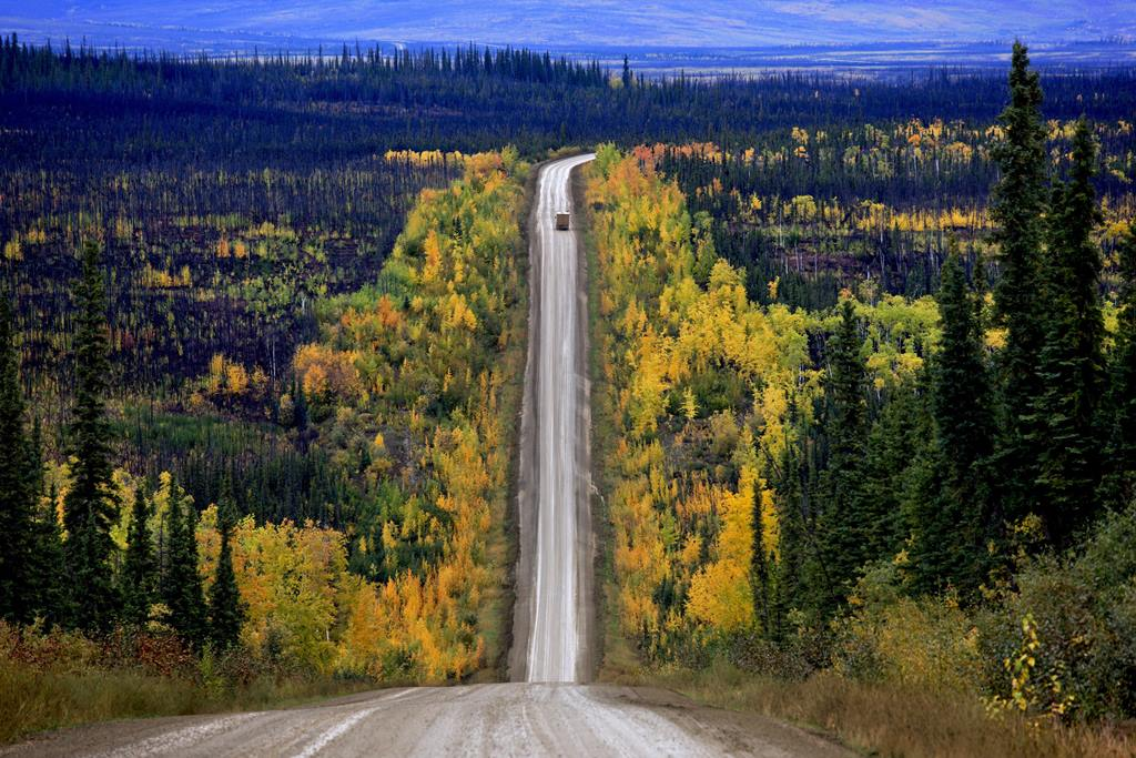 America, Indian Summer, James Dalton Highway, Nordalaska, autumn, autumn colours, autumn scenery, grit runway, highway, north Alaska, street