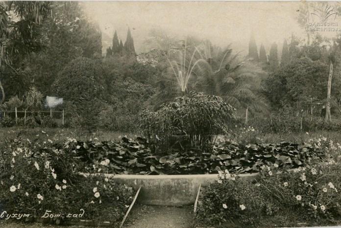 ბოტანიკური-ბაღი